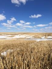 Fort Saskatchewan, Ab